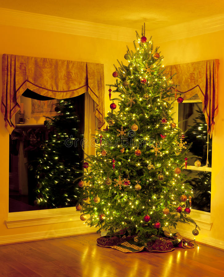 Christmas tree in living room corner with reflections