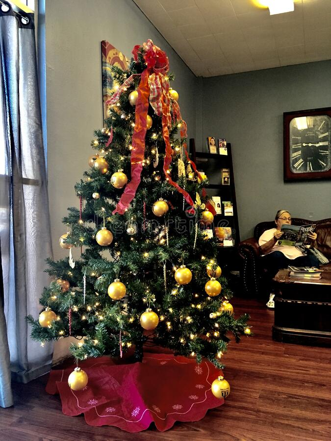 Christmas Tree In Living Room Free Public Domain Cc0 Image