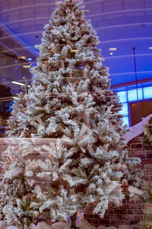 Christmas tree london with white fur. And branches royalty free stock photo