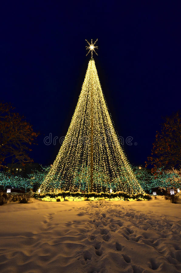 download christmas tree made of lights stock photos image 28827943 - Christmas Tree Made Of Lights