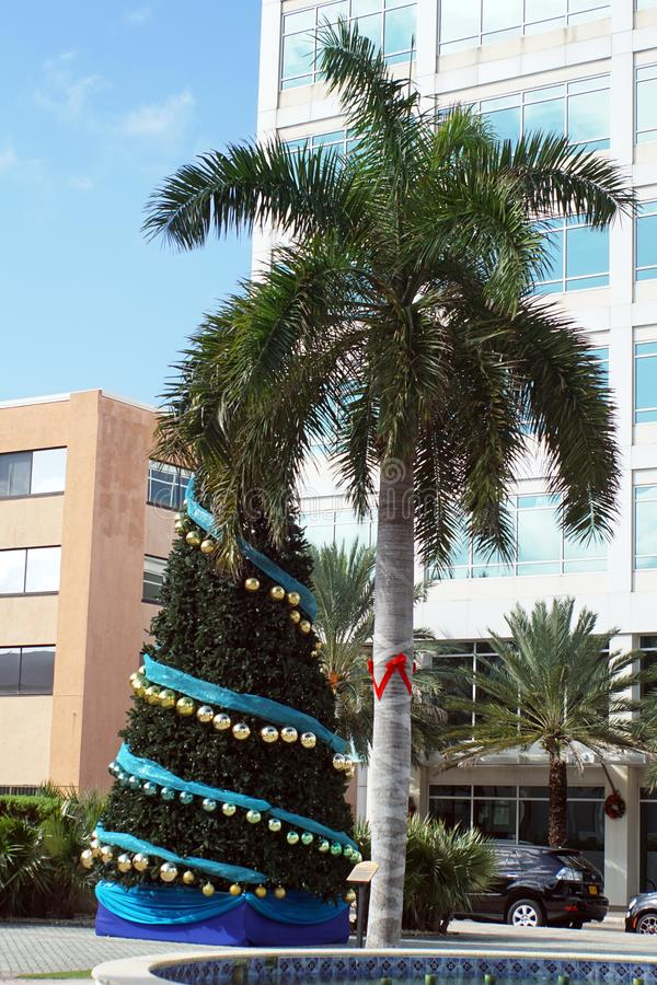 Christmas tree in the main square on Grand Cayman royalty free stock photos