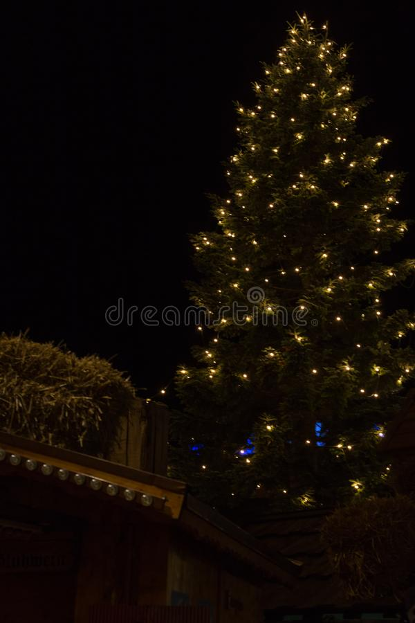 Christmas tree on a marketplace. In november south german historical city near munich and stuttgart stock photo