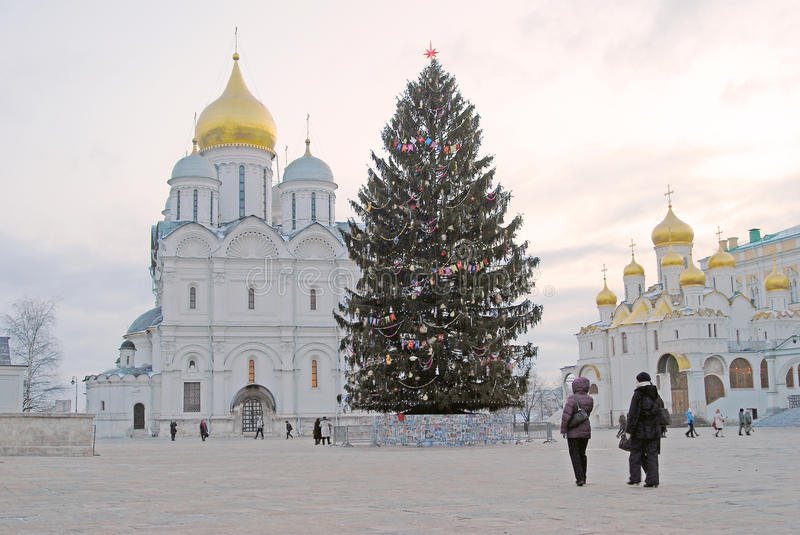 Christmas tree in Moscow Kremlin. Archangels and Annunciation churches stock photo