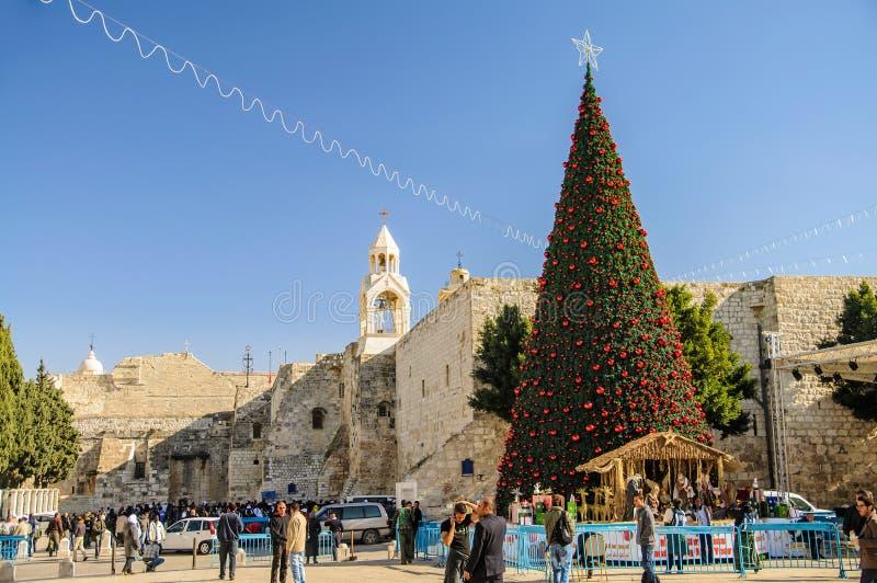 Christmas tree near Nativity church, Bethlehem royalty free stock image