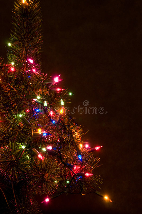 Christmas Tree At Night Stock Photo