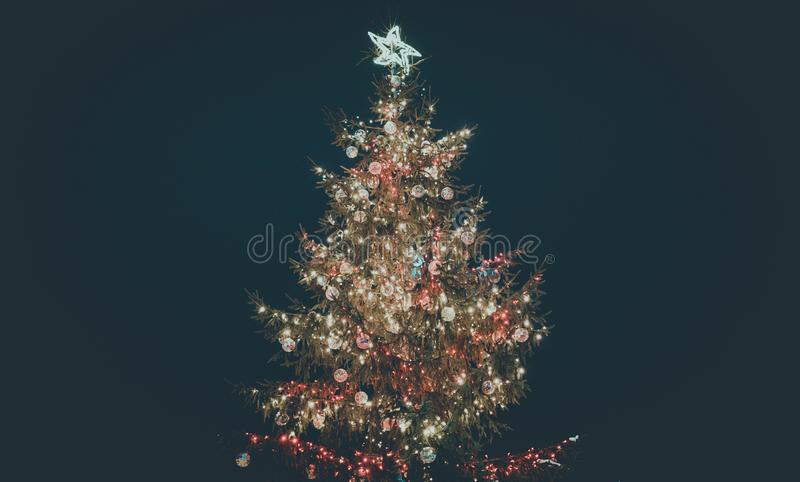 Christmas tree in the night stock images