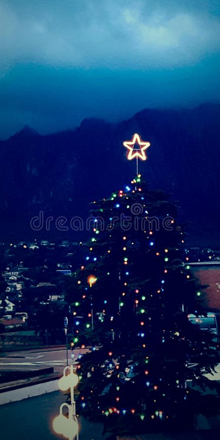 Christmas Tree during Nightime stock photography