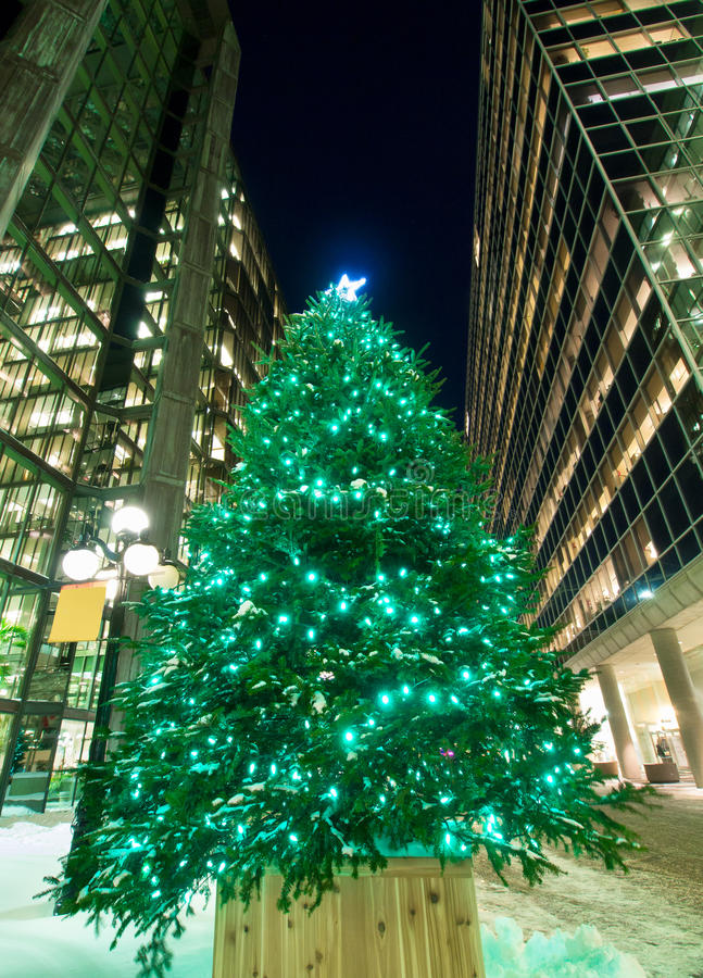 Christmas Tree Office Buildings stock photography