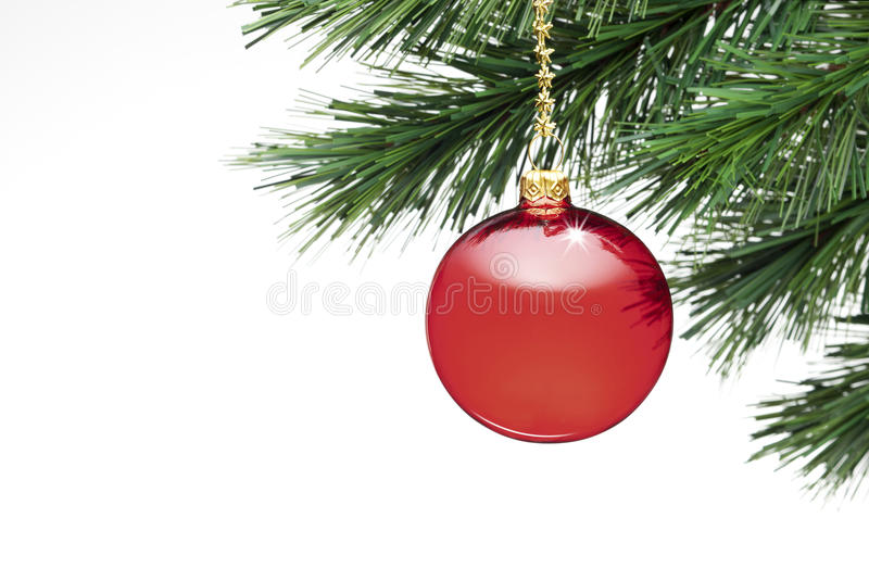 Christmas Tree Ornament White Background. A red christmas ornament on a tree isolated on a white background stock photography