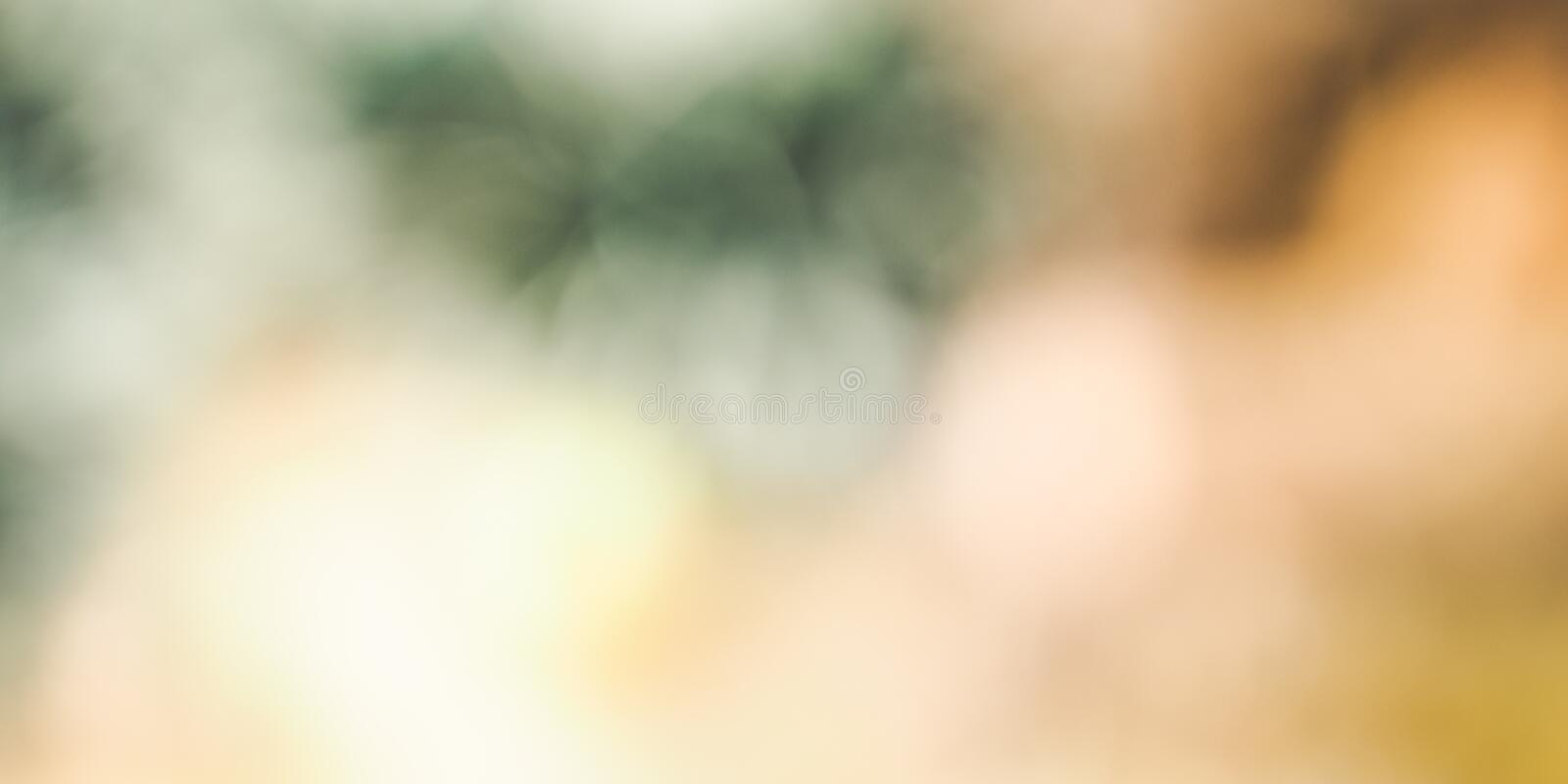 Christmas tree blur abstract background. Green gold royalty free stock image
