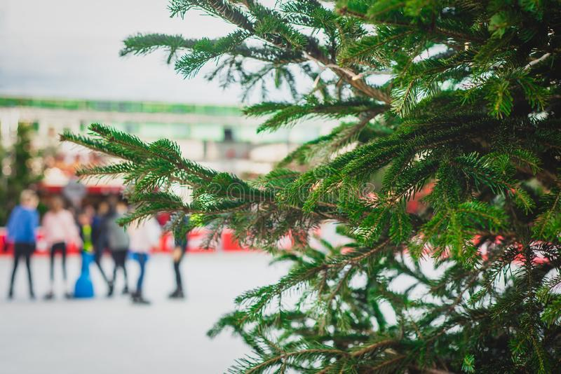 Christmas Tree at an Outdoor Ice Skating Rink With A Group of Fr. Christmas Tree in Front of the Outdoor Ice Skating Rink at the Christmas Market at Munich stock photography
