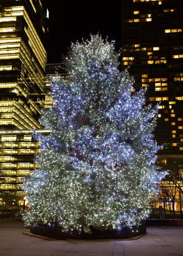 Christmas Tree Outside Lights