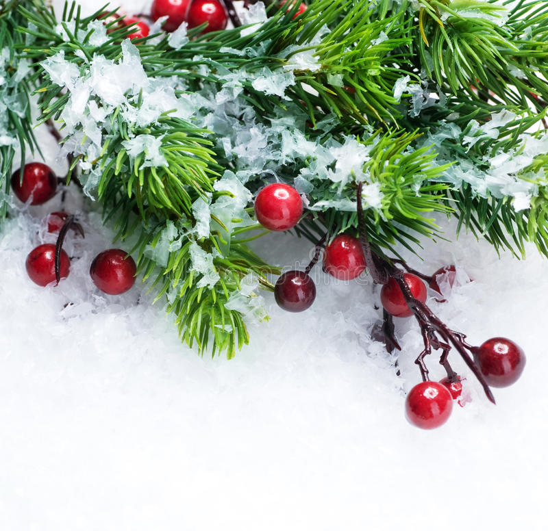 Christmas Tree Over Snow Background Stock Images