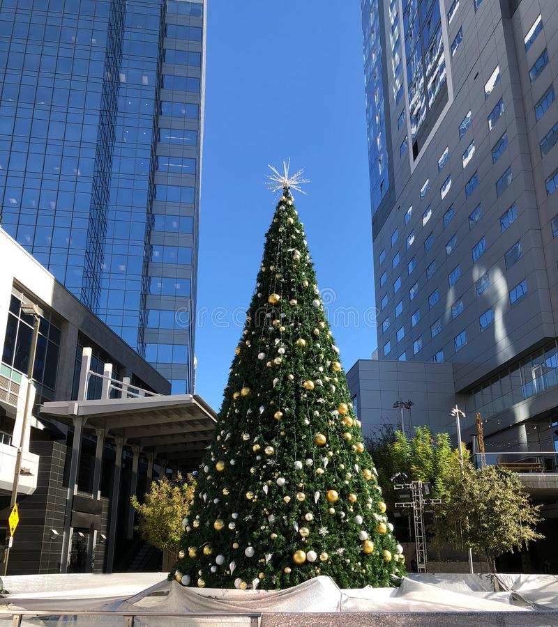 Christmas Tree in Phoenix Downtown. Holiday Christmas tree and skating rink covered with reflective tarp in downtown of Phoenix, Arizona stock image