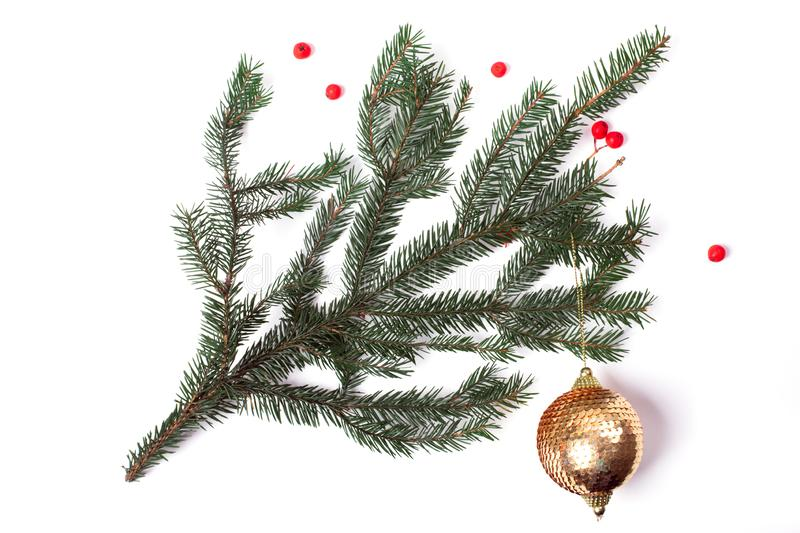 Christmas tree pine branch with red berries and sparkling ball isolated on white background royalty free stock photos