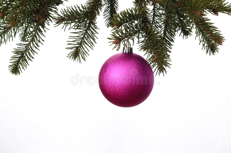 Christmas tree with purple balls isolated on white background stock images