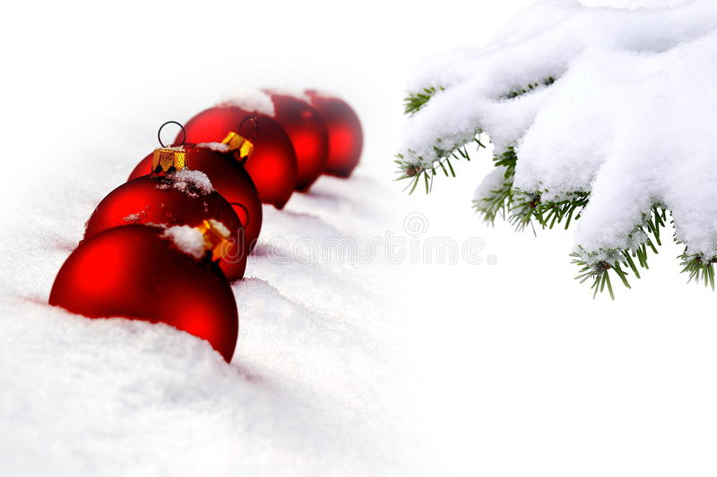 Christmas tree and red balls. Christmas evergreen spruce tree and red glass balls on snow background stock photo