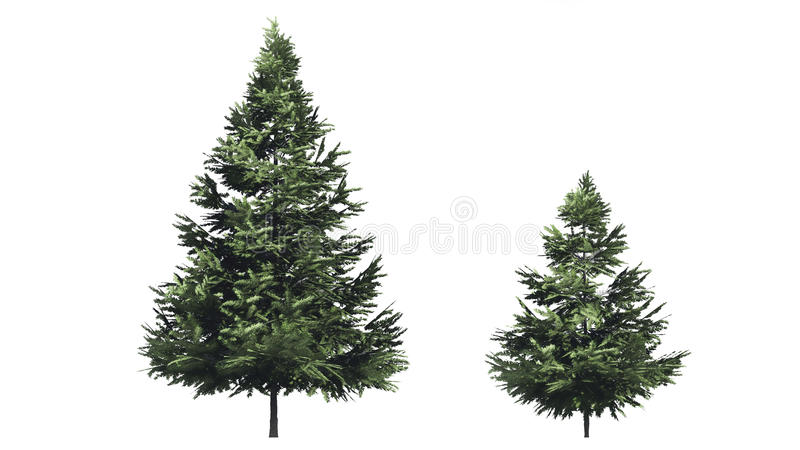 Christmas tree. For retouch photo amd mapping texture vector illustration