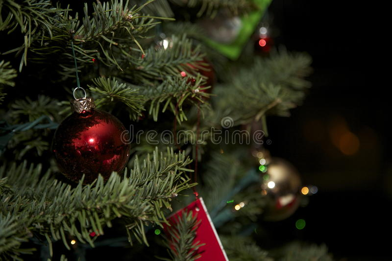 Download Christmas Tree With Santa Card And Stockings Stock Photo - Image: 32076232