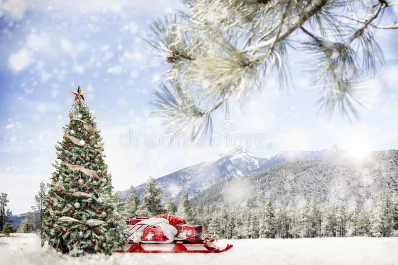 Snowy Outdoor Christmas Tree Scene in Mountains royalty free stock image