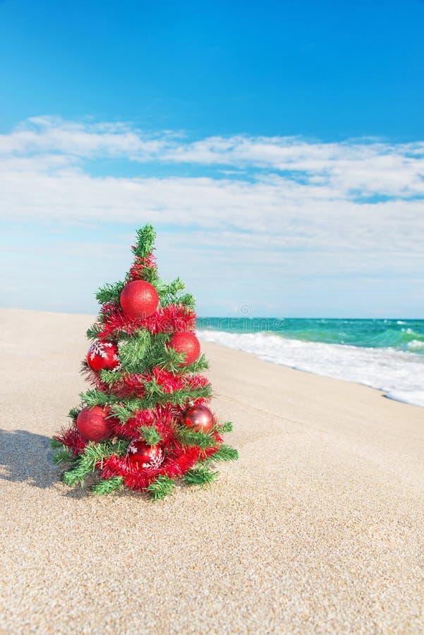 Christmas Tree On The Sea Beach. Christmas Vacation ...