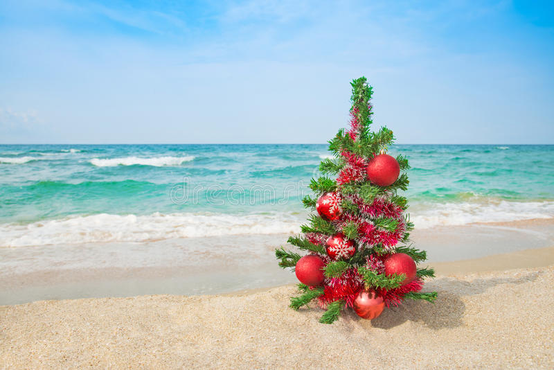 Christmas tree on the sea beach. Christmas vacation concept. stock photography