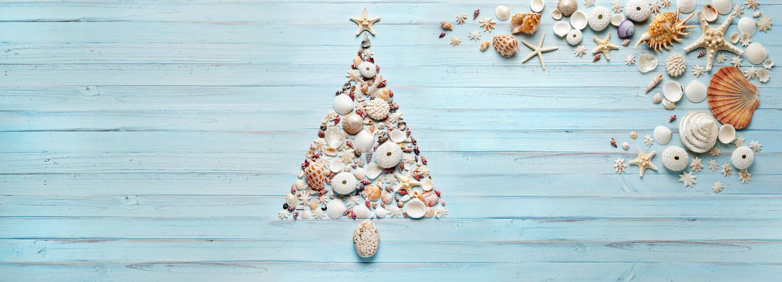 Christmas Tree Shells Tropical Banner Background. A christmas tree made of shells on a blue painted banner background
