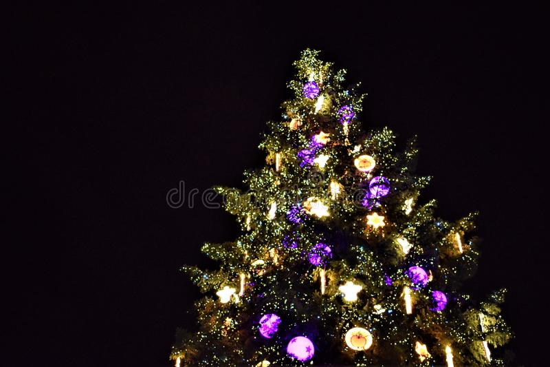 Christmas tree in Strasbourg. Strasbourg, France. Illuminated christmas tree with yellow and purple lights during the night in winter stock photo
