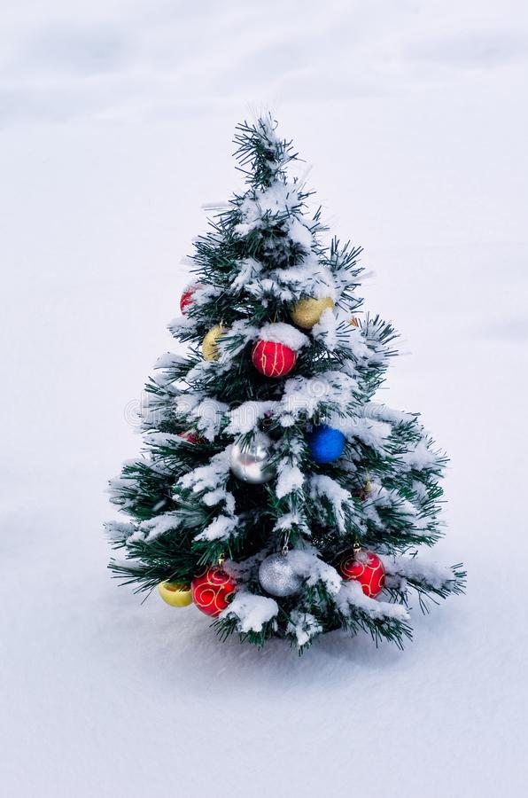 Christmas tree on the street in the snow. Christmas ornaments on the tree. Christmas fir outdoors in the winter. stock image