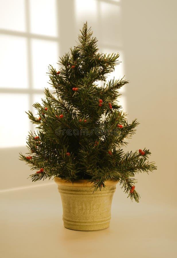 Christmas tree on table. Christmas tree on top of table stock photo