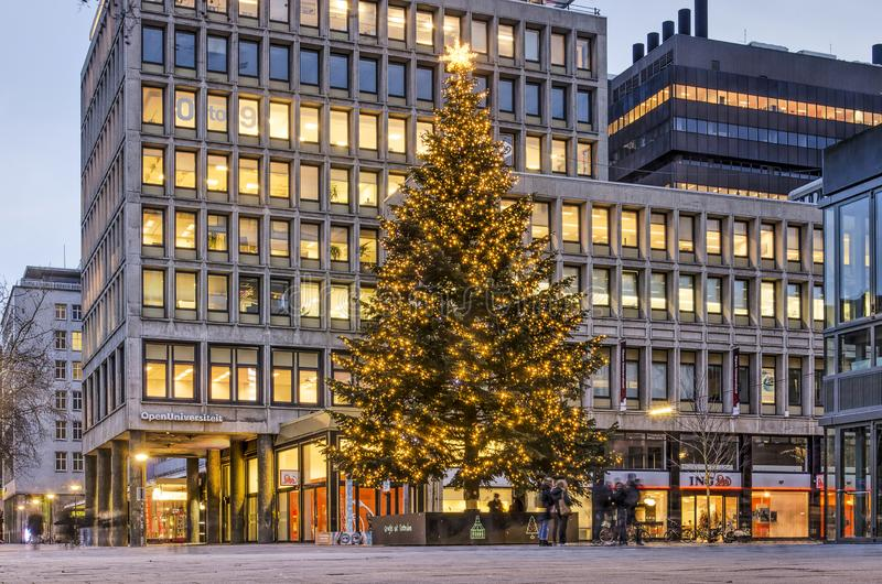 Christmas tree at town hall square royalty free stock images