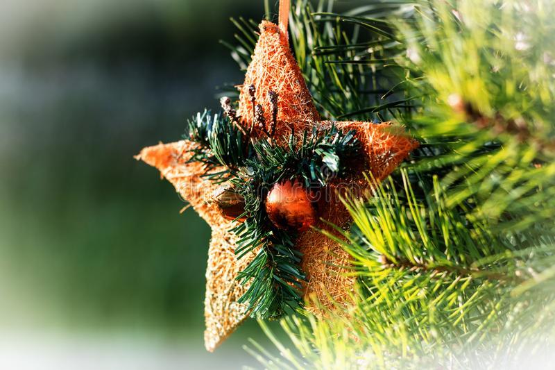 Christmas tree toy in the form of an orange star with balls hanging on a live spruce royalty free stock image