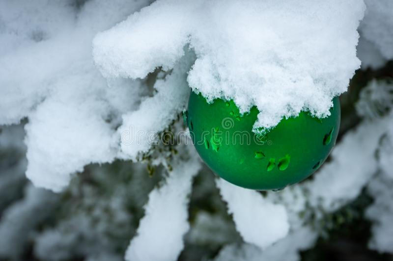Christmas tree toy green ball hanging under the snow on a branch of fir on the right. Real winter in the garden. royalty free stock photography