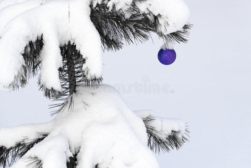 Christmas-tree toy on a snow-covered tree royalty free stock image
