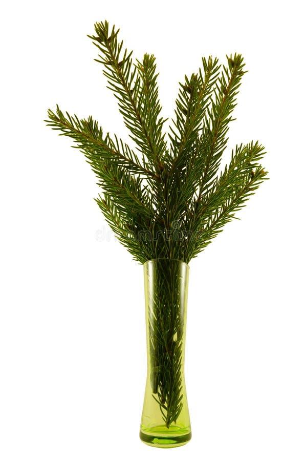 Xmas tree in a vase royalty free stock photos
