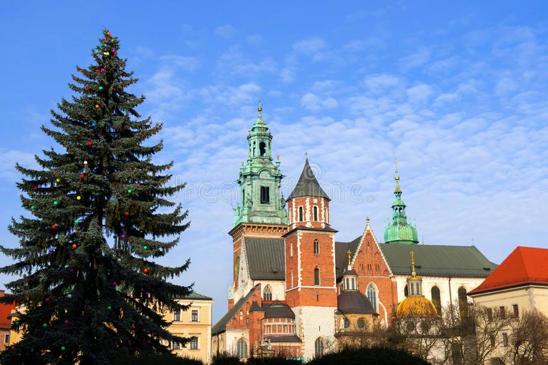 Christmas tree in Wawel Cathedral. Royal tombs. Krakow stock images