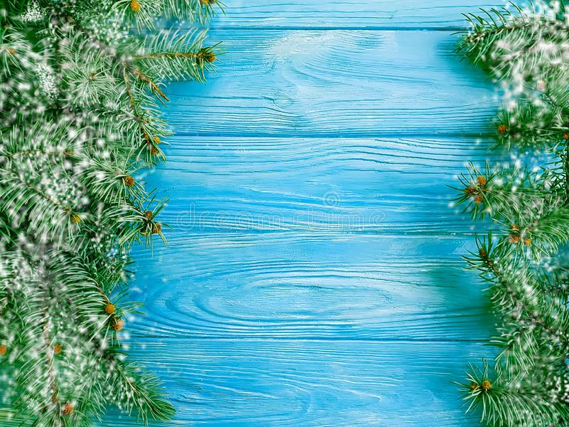 Christmas tree winter branch on blue wooden background, snow royalty free stock image