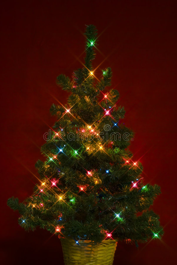 Free Christmas Tree5 Stock Photography - 1533262