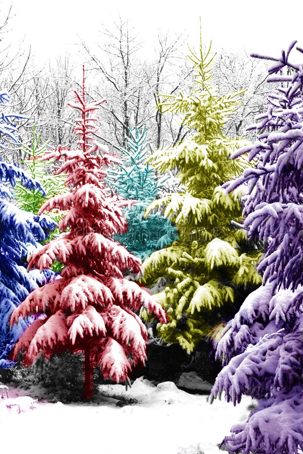 Free Christmas Trees Colorized Royalty Free Stock Photography - 1311357