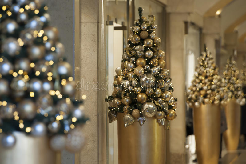 Christmas Trees in luxury Mall. Christmas trees in luxury shopping mall stock images
