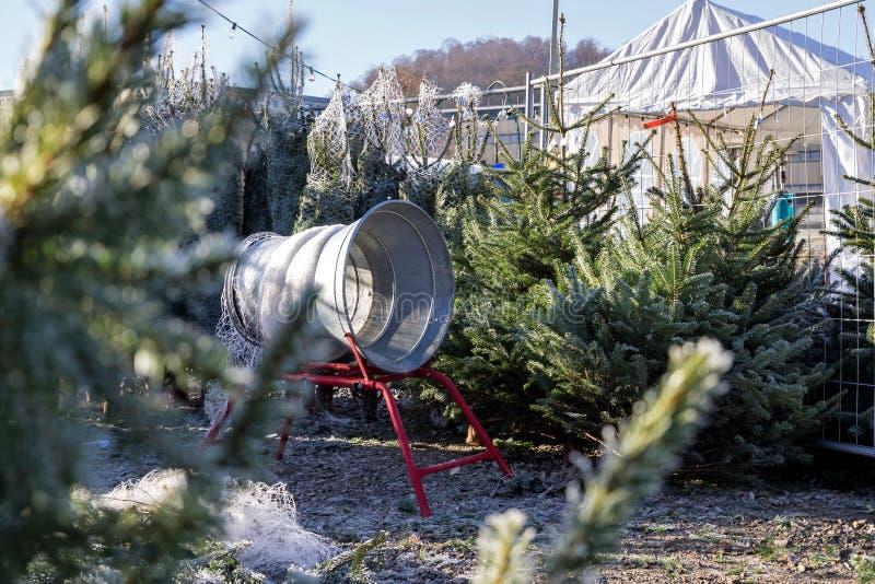 Christmas trees on sale. At German Christmas market royalty free stock photos