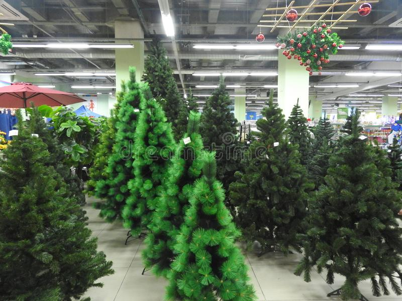 Christmas trees in the store. A shop selling Christmas trees and Christmas decorations for the new year royalty free stock photos