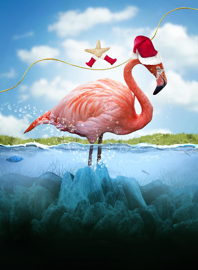 Christmas in the tropics vector illustration