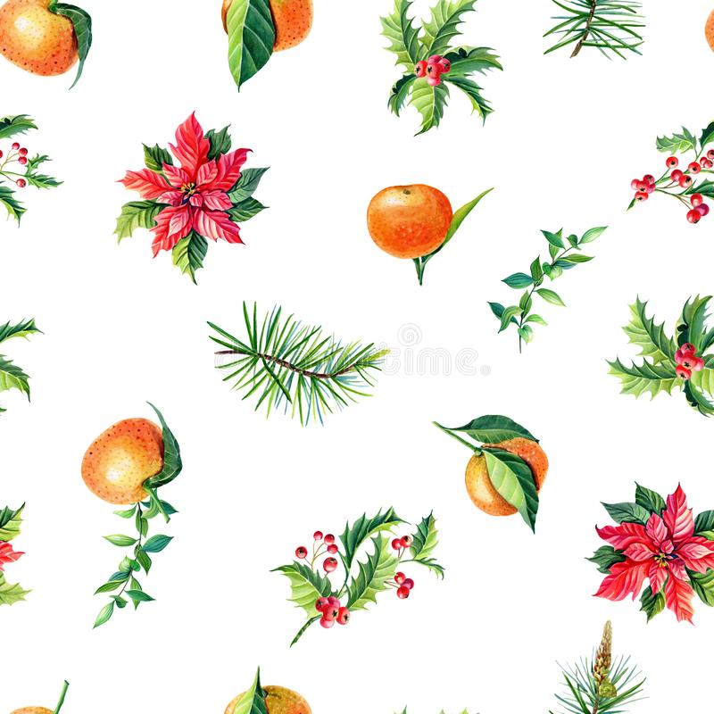 Christmas watercolor seamless pattern.Red poinsettia flowers,tangerine,Holly. Christmas watercolor seamless pattern.Red poinsettia flowers,tangerineHolly, leaves vector illustration