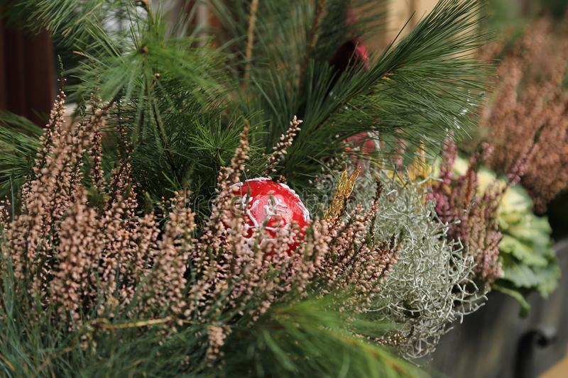 Christmas window decorations with fir, heather, red ball stock photo