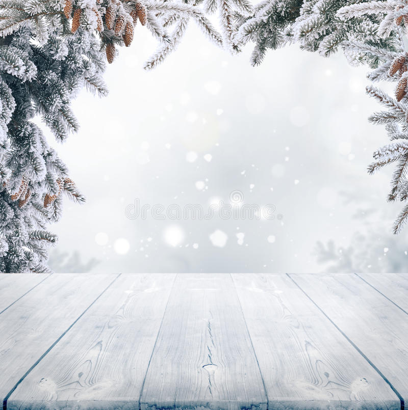 Free Christmas Winter Background Royalty Free Stock Photography - 46430437