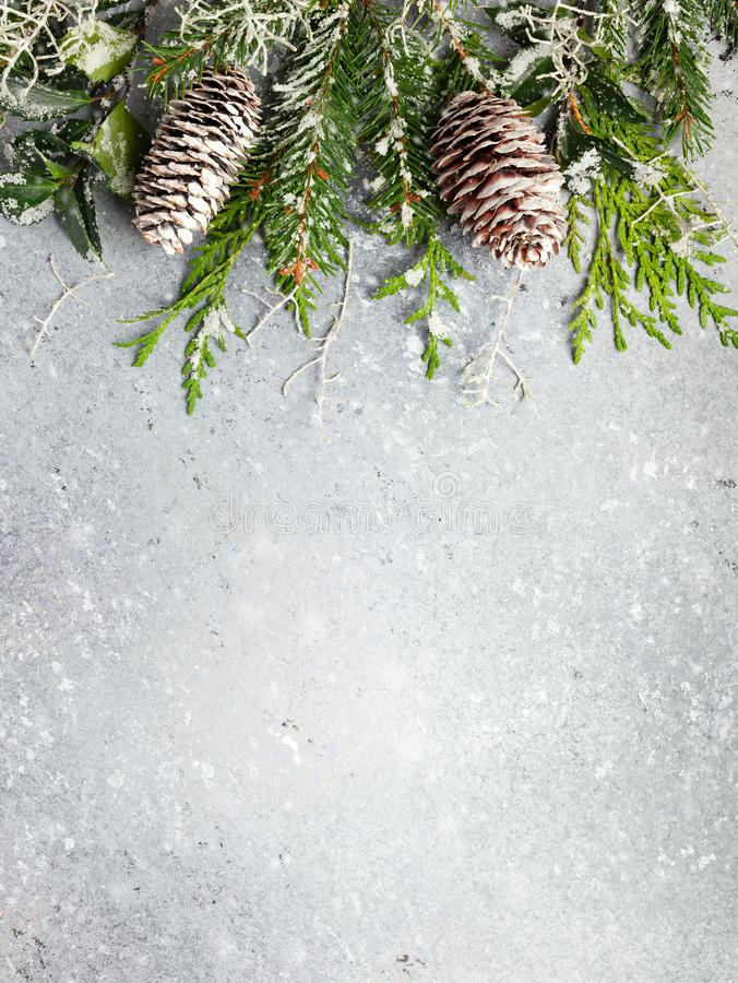 Christmas or winter background with a border of green and frosted evergreen branches and pine cones on a grey vintage board. Flat. Lay, winter concept with copy royalty free stock photo