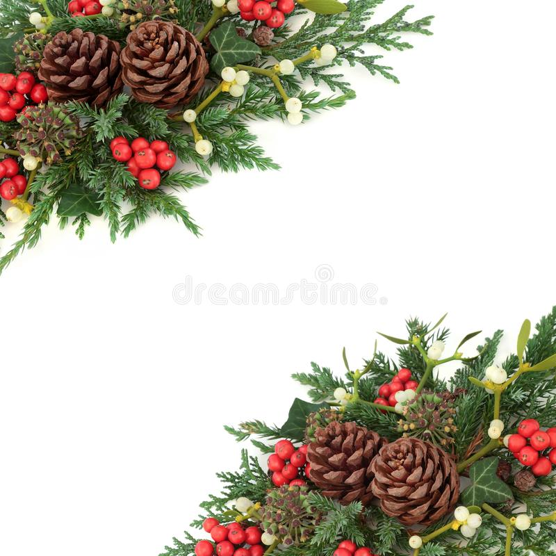 Christmas and Winter Border. Christmas and winter background border with holly, mistletoe, ivy, cedar and juniper leaf sprigs and pine cones on a white stock images