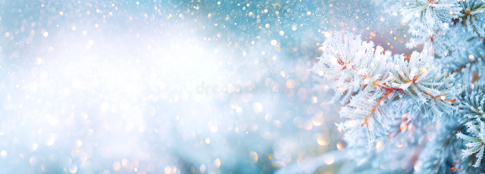 Christmas winter blurred background. Xmas tree with snow decorated with garland lights, holiday festive background. Widescreen backdrop. New year Winter art stock photo