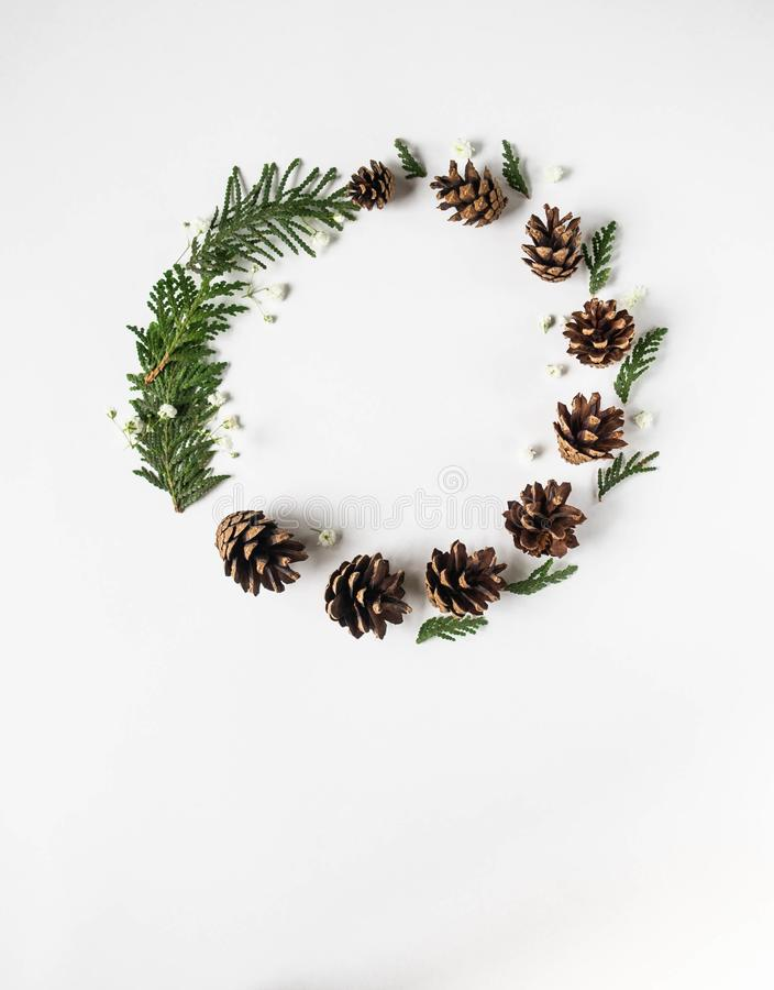 Christmas winter composition of thuja branches, white flowers and cones on white background. Flat lay, top view, copy space royalty free stock photos
